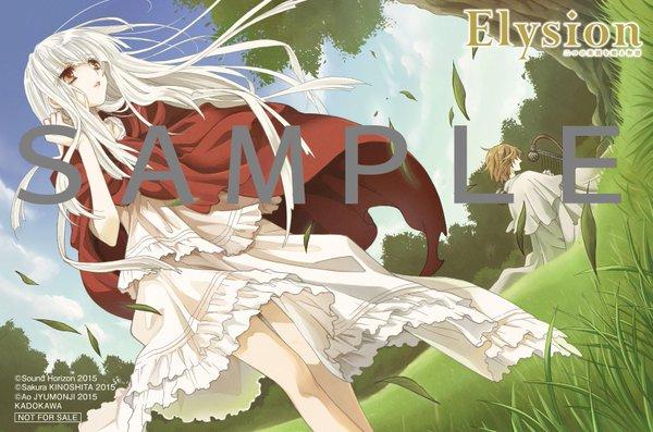 ElysionC1_tora.jpg