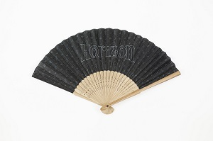 horizon_visa_card_10000_fan.jpg